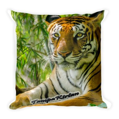 Tiger Square Pillow